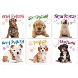 Sherman Puppy Patient Stickers -  100 Stickers Per Pack